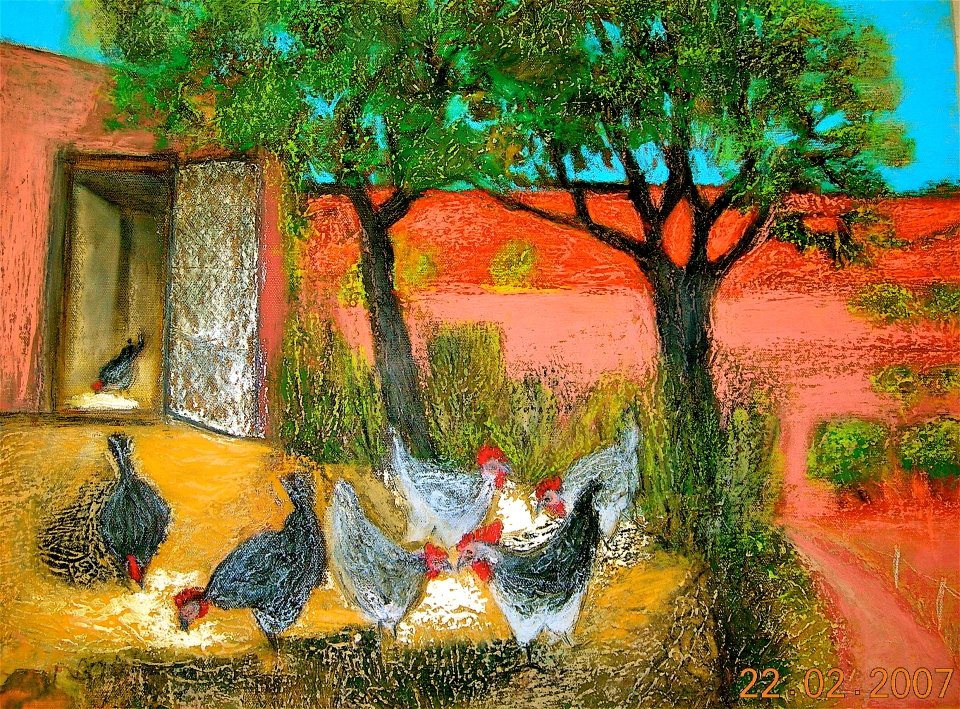 Feeding the 7 chickens