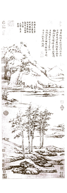 NiTsan 1371 - Woods & Valleys of Yu-shan